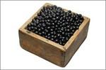 北海道産黒豆